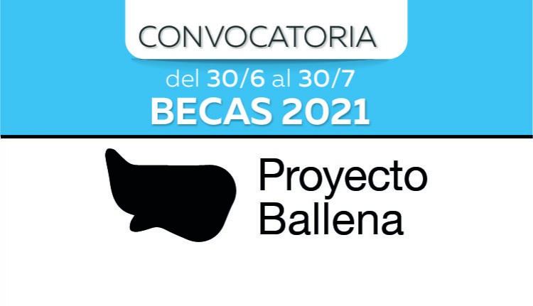 Proyecto Ballena: otorgarán becas de investigación artística