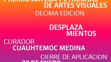 X Edición del Premio ArteBA - Petrobas de Artes
