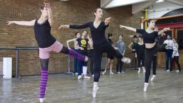 Danza: la carrera que espera