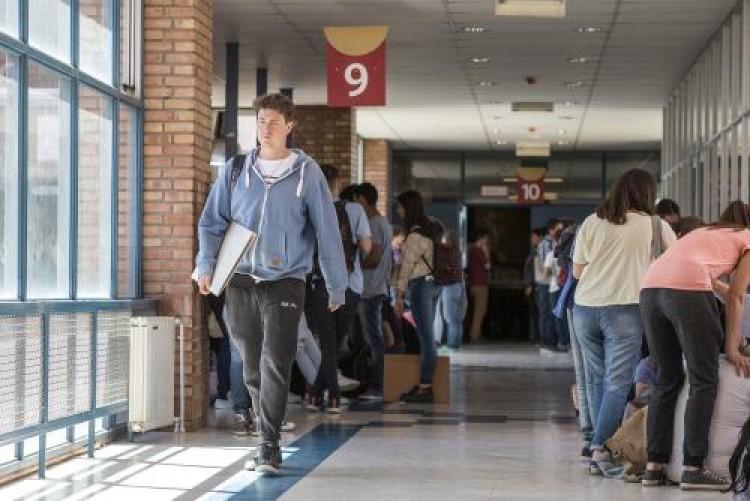 Convocan a estudiantes para becas de investigación de la FAD