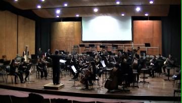 La Orquesta Juvenil brindará un concierto gratuito