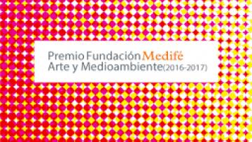Bienal Fundación Medifé Arte y Medioambiente