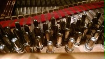 Pianistas en Vendimia